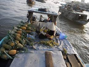 Radreise Kambodscha & Vietnam: Geführte Radtouren von Angkor nach Saigon Bild 2