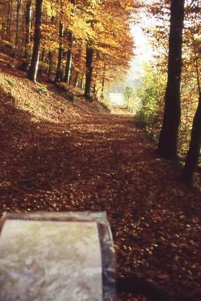 Diemelradweg (Diemel-Radweg) Bild 1