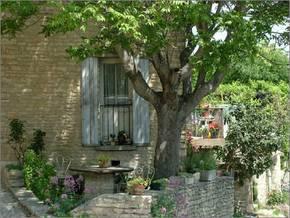 Radtouren Provence / Luberon Bild 0