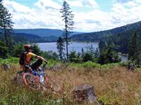 Bikeschaukel - MTB Tour im Murgtal / Schwarzwald Bild 0