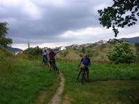 Powertour - Mountainbiken im Nordschwarzwald Bild 3