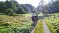 Bernstein-Tour - Biken in der Region Murgtal / Schwarzwald Bild 2