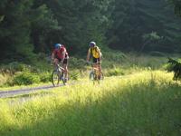 Vier-Wälder-MTB-Tour im Nordschwarzwald Bild 2
