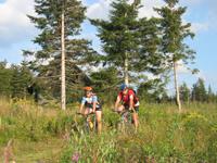MTB-Tour im Nordschwarzwald Bild 0