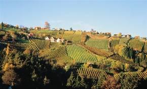 Thermenradweg / EuroVelo 9 in der Steiermark Bild 1