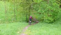 Bernstein-Tour - Biken in der Region Murgtal / Schwarzwald Bild 1