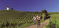 Wasser, Wein und Barock - vom Überlinger See ins Salemer Tal Bild 3