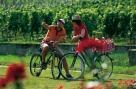 Feuerberg- Radtour Bild 0