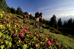 BIKETRAIL TIROL - MTB-Touren in den Alpen (Bike Trail Tirol) Bild 2