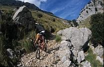 Biketouren Mallorca: ALCUDIA  (geführte + individ. MTB-Touren) zum Saisonstart Bild 3