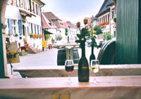 Radweg Deutsche Weinstraße Bild 3